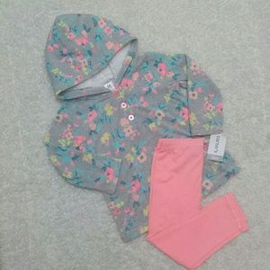 Carter's Hooded Pullover and Legging Set